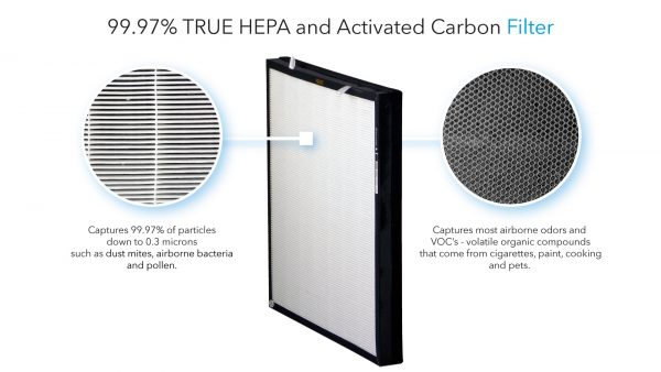 TRUE HEPA and Activated Carbon Filter - Life Cell 1550 UV